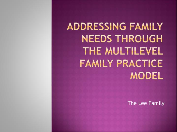 addressing family needs through the multilevel family practice model n.