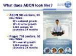 what does abcn look like