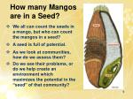 how many mangos are in a seed
