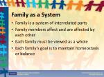 family as a system