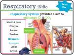 respiratory intro