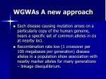 wgwas a new approach