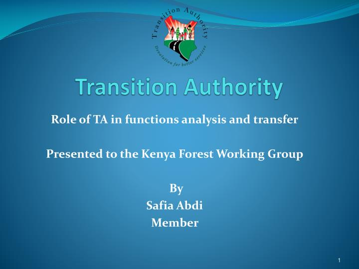 transition authority n.