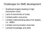 challenges for sme development