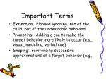 important terms1