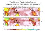 the diurnal cycle in the tropics yang and slingo 2001 mwr 129 784 801