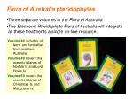 flora of australia pteridophytes