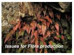 issues for flora production