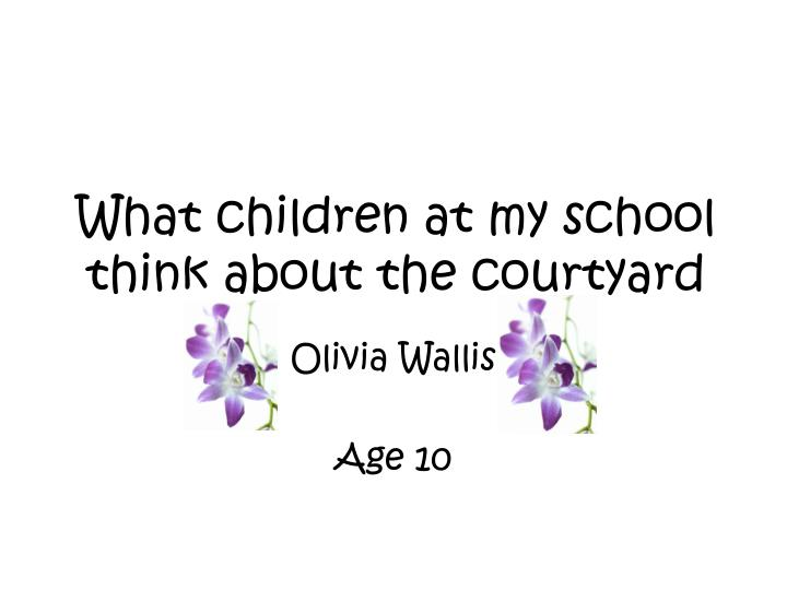 what children at my school think about the courtyard n.