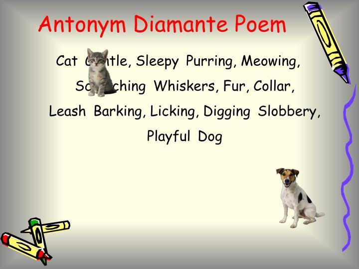 Dog Cat Diamante Poem