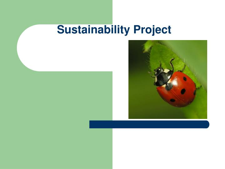 sustainability project n.