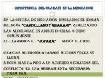 importancia del guarani en la medicaci n
