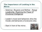 the importance of looking in the mirror