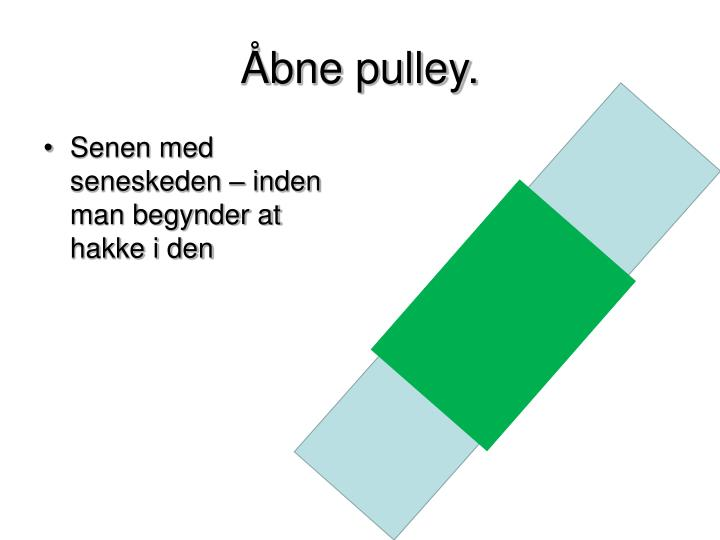 Bne pulley