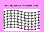particle motion transverse wave