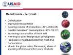 market trends berry fruit