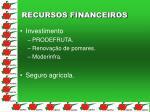 recursos financeiros1