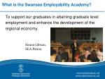 what is the swansea employability academy