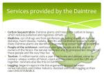 services provided by the daintree