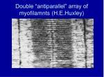 double antiparallel array of myofilamnts h e huxley