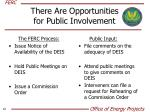 there are opportunities for public involvement1
