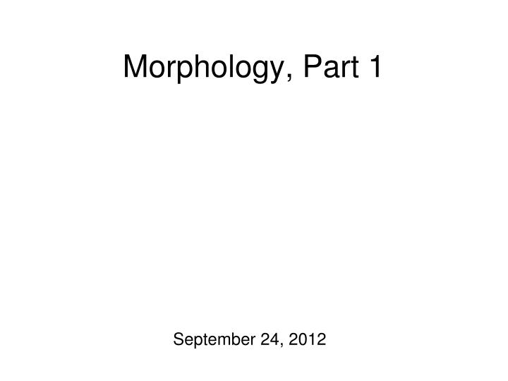 morphology part 1 n.