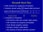microsoft word files