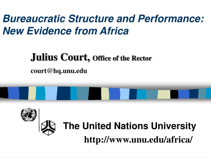 bureaucratic structure and performance new evidence from africa n.