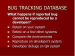bug tracking database2