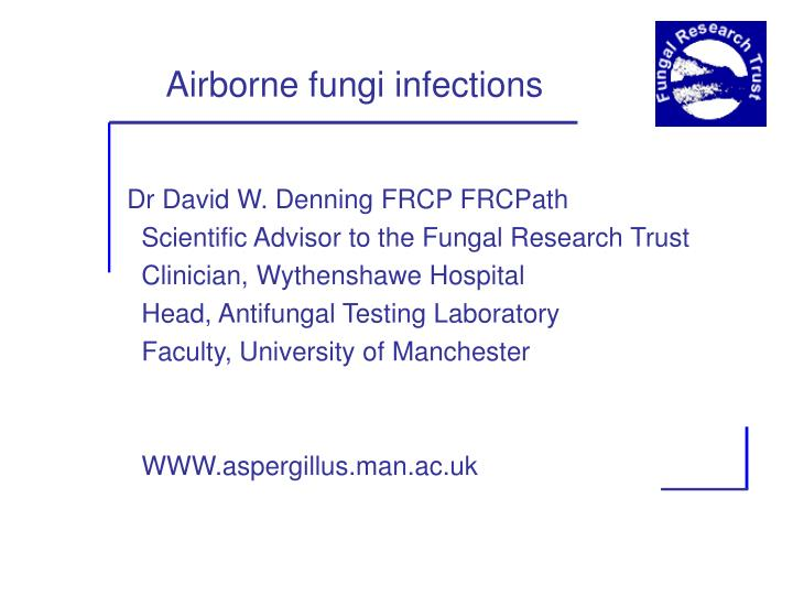 airborne fungi infections n.