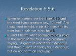 revelation 6 5 6