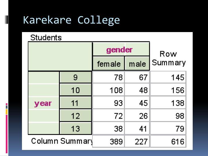 Karekare college