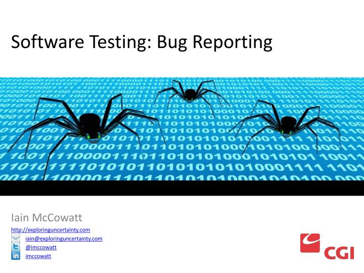 software testing bug reporting n.