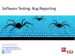 software testing bug reporting