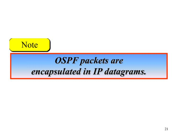 OSPF packets are