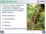 what is behavior