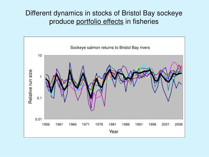 Different dynamics in stocks of Bristol Bay sockeye produce