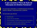o que consiste o plano de a o de educa o em direitos humanos