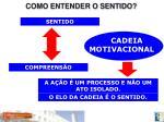 como entender o sentido1