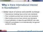 why is there international interest in accreditation