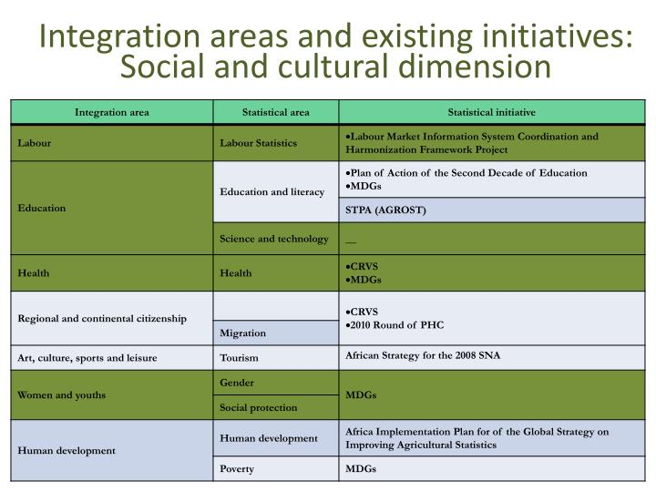 Integration areas and existing initiatives: Social and cultural dimension