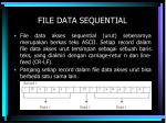file data sequential