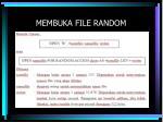 membuka file random