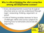 why is critical thinking the vital connection among developmental courses