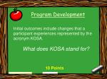 program development30