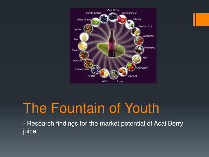 the fountain of youth n.
