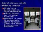 sistematik laboratuvar protokol yerler ve masalar