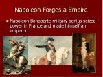 napoleon forges a empire