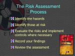 the risk assessment process1