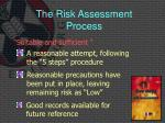 the risk assessment process10